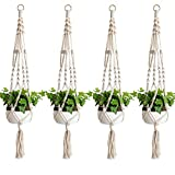 Accmor Elegant 39 In Plant Hanger Set of 4 (Small Image)