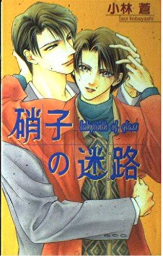 Glasses Byblos - Maze of glass (B Boy Noberuzu) (1997) ISBN: 4882716089 [Japanese Import]