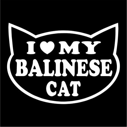 I LOVE MY BALINESE CAT Feline cat love Sticker Graphic - Peel and Stick - Decorative Sticker