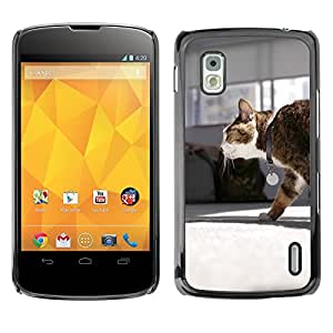 Hot Style Cell Phone PC Hard Case Cover // M00116141 Cat Mia Walk Pet // LG Nexus 4 E960