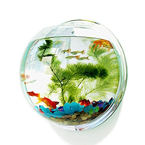 KINGSUNG Creative Acrylic Round Wall Mounted Hanging Fish Bowl Aquarium Tank for Gold Fish and Beta Fish Plant Vase Home Decoration (Round Goldfish Bowl)