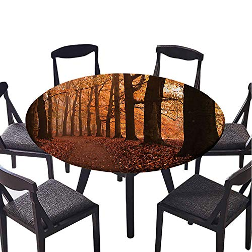 SATVSHOP Round Table cover-70 Round-for Weddings/banquets,Canopy Fall Season Hiking Walkway Enchanted for.(Elastic Edge) ()