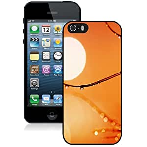 Beautiful Unique Designed iPhone 5S Phone Case With Macro Drops On Branch Hot Sun_Black Phone Case
