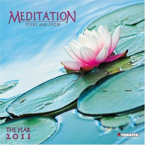 Meditation here and now 2011. Mindful Edition