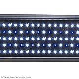 Beamswork LED Pent 24 0.50W Timer Aquarium Light Freshwater Marine FOWLR 60cm