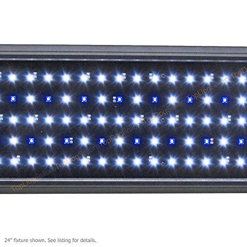 Beamswork LED Pent 24 0.50W Timer Aquarium Light