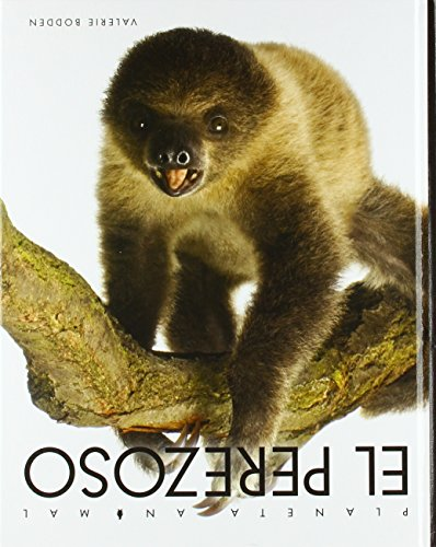 El perezoso / The Lazy One (Planeta Animal) (Spanish Edition) by Creative Educ
