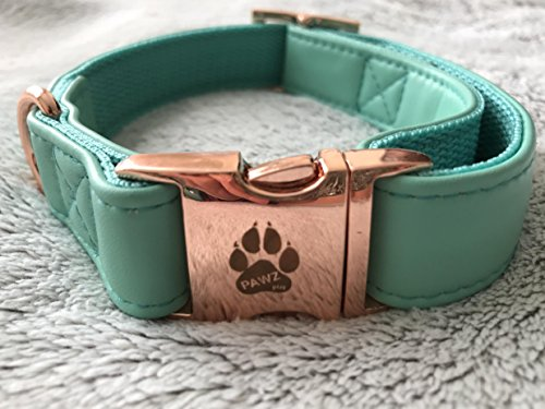 Rose Leather Dog Leash (Luxury Dog Bow Collar & Leash Set Mint Green Faux Leather (Mint Green, Large))
