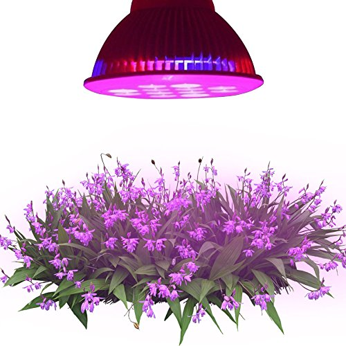 LE® Hydroponic LED Grow Lights, 12W E26/E27 PAR38, 3 Bands, 30° Beam Angle, Plant Lights, Red + Blue for Plants, Flowers, Vegetables, Greenhouse Lighting , Grow Light Bulbs (660nm and 630nm Red and 460nm Blue)
