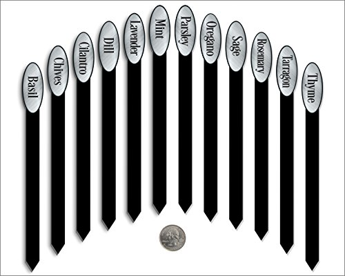 Red Tail Crafters Herb Garden Plant Markers Laser Etched Metallic Oval Stick Style 12/Set 08in Brushed Silver/Black