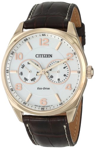 Gold Dial Dress Tone Watch (Citizen Men's Eco-Drive Stainless Steel and Leather Watch, AO9023-01A)