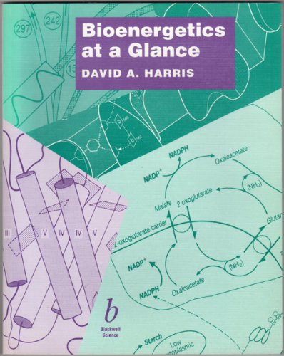 Bioenergetics at a Glance: An Illustrated Introduction
