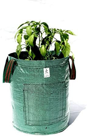 Garden E.A.T.S. 10 Gallon Garden Potato Grow Bag with Handles 2Pack -Grow Veggies Onions, Potatoes, Carrots Anything You Desire, Smart Easy Access Door to Harvest All Root Vegetables