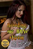 Breeding My BBW Harem A Full Figured Reverse Gangbang Orgy
