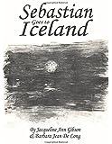 Sebastian Goes to Iceland