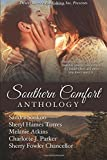 img - for Southern Comfort book / textbook / text book