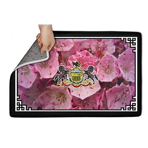 TONGZIRT No Slip Doormat Pennsylvania Mountain-Laurel Welcome Floormat Spring ()