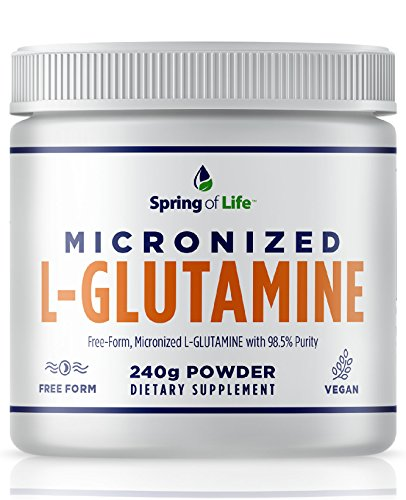 Spring of Life Micronized L-Glutamine, Free-Form 98.5 Purity, Gluten Free, micronized for Maximum Absorption, 240 Grams