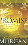 The Promise, Robert J. Morgan, 0805446834