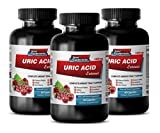 Product review for brain and memory supplements - URIC ACID FORMULA EXTRACT 1430Mg - green tea diet pills - 3 Bottles (180 Capsules)