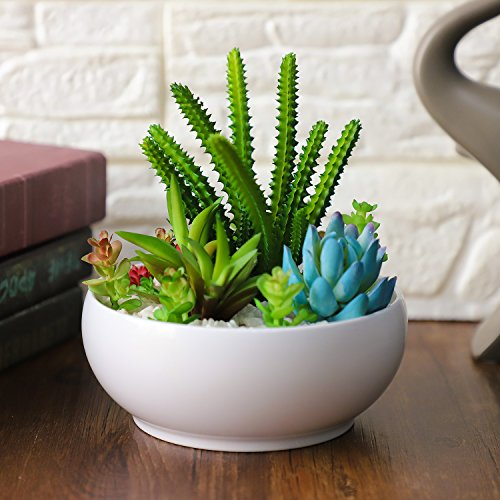 6 Inch Modern White Resin Round Succulent Planter Pot with Colorful Artificial Succulent Plants for Home Decor/Office Decoration