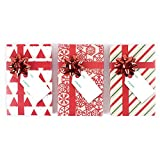 Hallmark Holiday Gift Card Holder (Red)