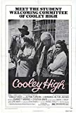 Cooley High POSTER (11' x 17')