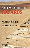 img - for Salt Weathering Hazards book / textbook / text book