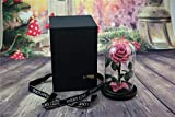 XJ&DD Beauty The Beast Rose,Live Forever Rose In Glass On Wooden Base,Rose 100% Natural-G 22x15cm(9x6inch)