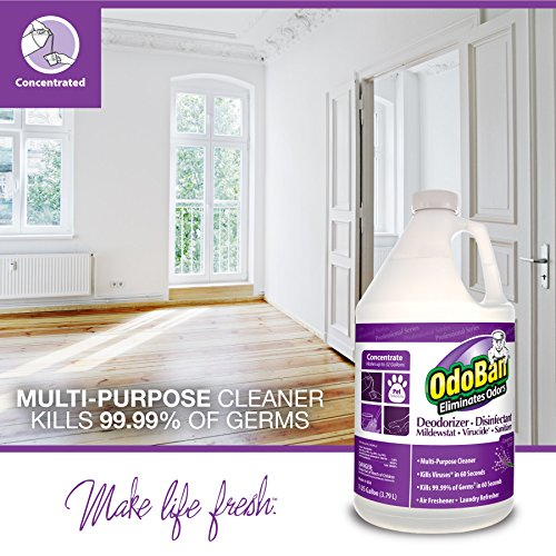 OdoBan 911162-G Disinfectant Odor Eliminator and All Purpose Cleaner Concentrate, Lavender Scent, 128 oz by OdoBan (Image #1)