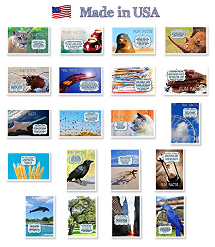 FUN FACTS postcard set of 20. Post card variety pack with trivia and fun fact theme postcards. Made in USA.
