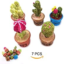 7pcs Cactus and Flower Pot Plant Miniature Ornament Set for Dollhouse Decor Fairy Garden