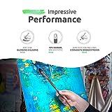 ZenART Oil & Acrylic Paint Filbert-Brushes – 6pc