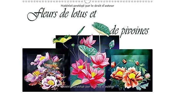 Fleurs De Lotus Et De Pivoines 2018 Dessins Au Crayon De