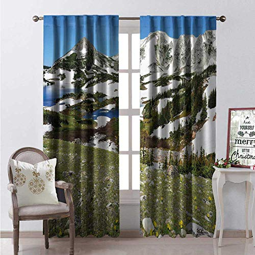 Hengshu Snow Window Curtain Fabric Snowy Lake Mountains and Alpine Meadow Wild Flowers in Medicine Bow Summer Drapes for Living Room W120 x L108 Multicolor ()
