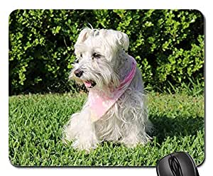 Mokale High Quality Mouse Pads - Dogs Schnauzer Pet Dog Breed German White Fur Non-Slip Mouse pad