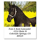 Black Horse In Yellow Square Return Address Labels - Set of 144 1-1/8'' x 2-1/4'' Self-Adhesive, Flat-Sheet labels