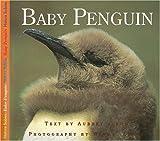 Baby Penguin, Aubrey Lang, 1550416936