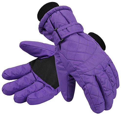 (Livingston Women's Thinsulate Insulated Sports Waterproof Ski Gloves, Purple,)