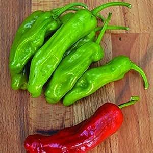 30++ Organic Italian Pepperoncini Pepper Seeds
