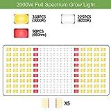 Phlizon Linear Series PH-2000 SMD LED Plant Grow