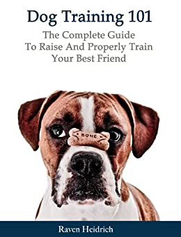 how to properly train dog