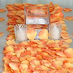 BalsaCircle 4000 Silk Artificial Rose Petals Wedding Ceremony Flower Scatter Tables Decorations Bulk Supplies Wholesale 7