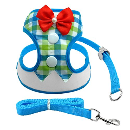 Nylon Mesh Puppy Vest Breathable Pet Walking Harnesses And Leash Set Tuxedo For Small Dogs Blue L Pink Camo Star Step