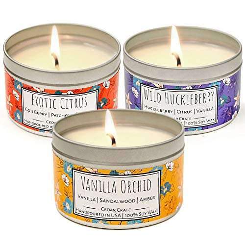 (Wild Escapes | Exotic Citrus | Vanilla Orchid | Wild Huckleberry | Luxury Scented Soy Candles | 8 Oz. Travel Tin Candle Pack | Made in USA | Decorative Aromatherapy | Decorative Candles Pack)