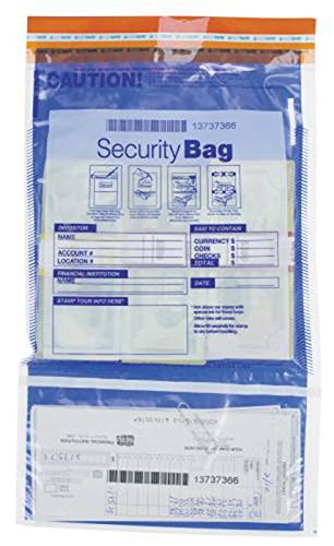 EGP Security Deposit Bag w/Dual Pockets 10 x 15, 100 Bags by EGPChecks