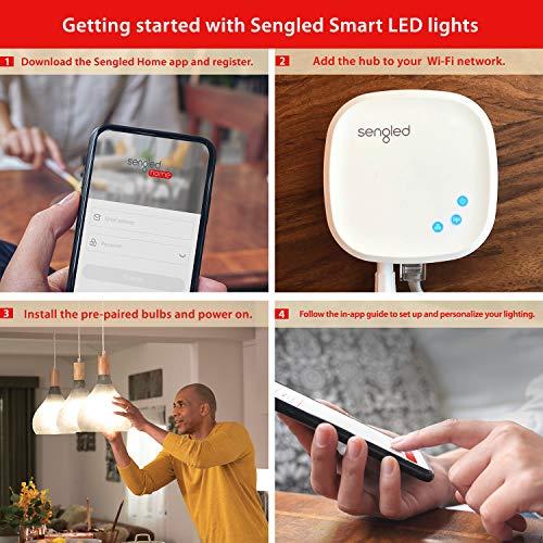 Sengled Smart light Bulb Starter Kit, Smart Bulbs that Work with Alexa & Google Home, Smart LED Light Bulb A19 Daylight (5000K), 9W (60W Equivalent), 2 Smart Bulbs & 1 Smart Hub