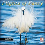 Flights Of Fancy: The Best Birds Of BPOTY, Bird Photographer Of The Year 2018 Wall Calendar (CA0179)