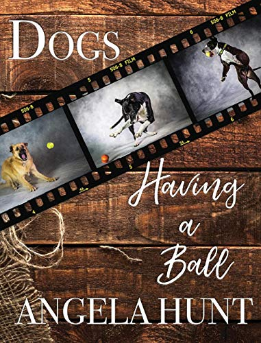 Dogs Having a Ball