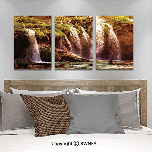 Canvas Wall Art HD Waterfall Forest Tree Moss Lake Stones Rocks Wonder of The World Image Modern Canvas Prints Painting Artworks Oil Painting Decorative,15.7